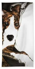 Hand Towel featuring the photograph Nap Time by Robert McCubbin