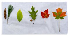 Needle And Leaf Comparison Hand Towel