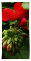 Bath Towel featuring the photograph New Life by Bruce Bley