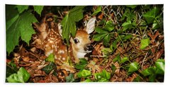 Newborn Fawn  Hand Towel by Eleanor Abramson