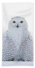 Nh Seacoast Snowy Owl  Bath Towel
