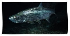 Night Tarpon Hand Towel by Carey Chen