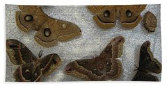 North American Large Moth Collection Bath Towel