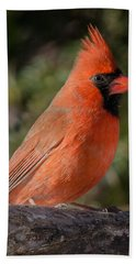 Northern Cardinal 2 Bath Towel