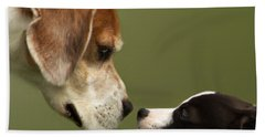 Nose To Nose Dogs 2 Bath Towel by Linsey Williams