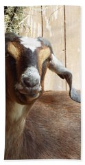 Nubian Goat Hand Towel