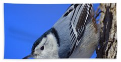 Nuthatch Hand Towel