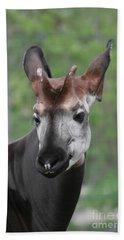 Bath Towel featuring the photograph Okapi #2 by Judy Whitton
