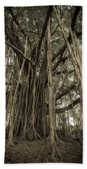 Old Banyan Tree Hand Towel