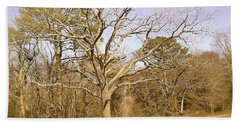 Hand Towel featuring the photograph Old Haunted Tree by Amazing Photographs AKA Christian Wilson