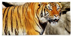 On The Prowl Bath Towel by Jason Politte