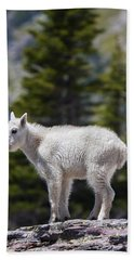 Goat Rocks Wilderness Photographs Hand Towels