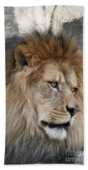 Bath Towel featuring the photograph Onyo #4 by Judy Whitton