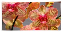 Hand Towel featuring the photograph Orchid by Judy Palkimas