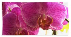 Hand Towel featuring the photograph Orchid by Lingfai Leung