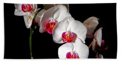 Orchid On Black Hand Towel