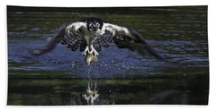 Osprey Bird Of Prey Bath Towel