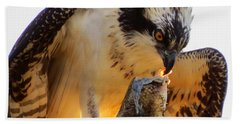 Hand Towel featuring the photograph Osprey Breakfast by Dianne Cowen
