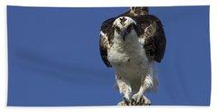 Osprey Photo Hand Towel