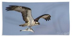 Osprey With Dinner Bath Towel