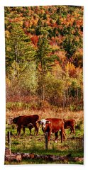 Hand Towel featuring the photograph Cow Complaining About Much by Jeff Folger