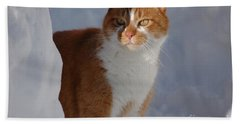 Hand Towel featuring the photograph Otis by Christiane Hellner-OBrien