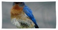 Our Own Mad Bluebird Bath Towel by Betty Pieper