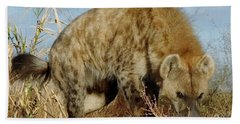 Out Of Africa Hyena 1 Bath Towel