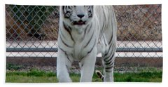 Out Of Africa White Tiger Bath Towel