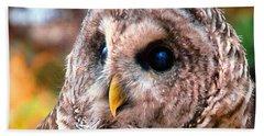 Owl Gaze Hand Towel