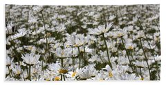 Ox Eye Daisies Bath Towel