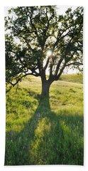 Hand Towel featuring the photograph Pacific Coast Oak Malibu Creek by Kyle Hanson