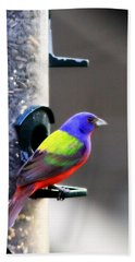 Painted Bunting - Img 9757-002 Hand Towel by Travis Truelove