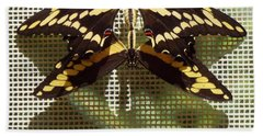 Painted Lady Goes Out Bath Towel