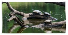 Painted Turtles  Chrysemys Picta Hand Towel