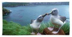 Pair Of Grey-headed Albatross Hand Towel
