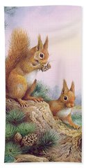 Pair Of Red Squirrels On A Scottish Pine Bath Towel