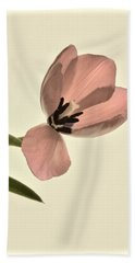 Pale Pink Tulip Hand Towel