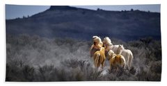 Palomino Buttes Band Hand Towel