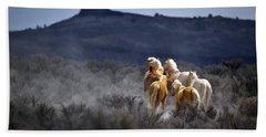 Palomino Buttes Band Bath Towel