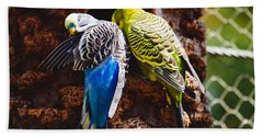 Parakeets Hand Towel by Pati Photography