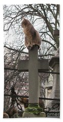 Paris Cemetery Cats - Pere La Chaise Cemetery - Wild Cats On Cross Bath Towel by Kathy Fornal