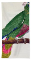Parrot Hand Towel by Francois Nicolas Martinet