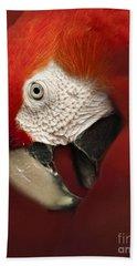 Parrot Portrait Bath Towel