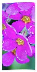 Parrys Primrose Primula Parryi Blooms Bath Towel