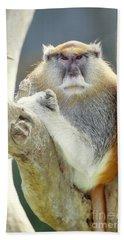 Patas Monkey Bath Towel