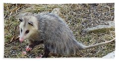 Pawing Possum Hand Towel