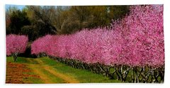 Hand Towel featuring the photograph Peach Orchard In Carolina by Lydia Holly
