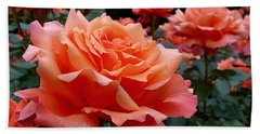 Peach Roses Bath Towel