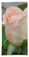 Hand Towel featuring the photograph Fragile Peach Rose Bud by Belinda Lee